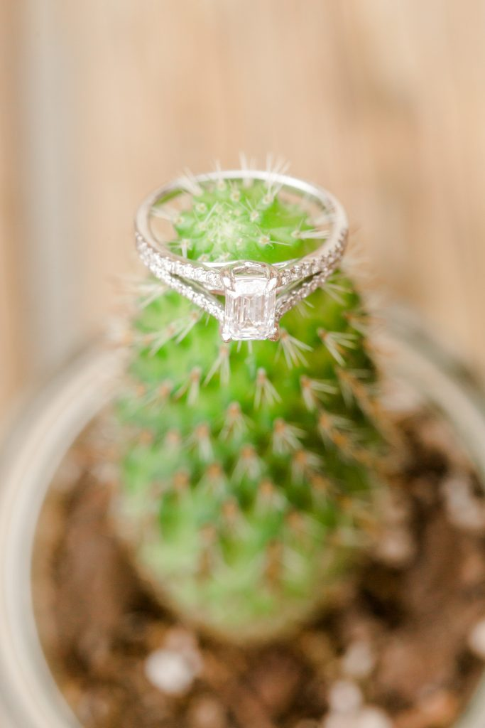 Gorgeous engagement ring on a fitting cactus for the theme at Chamard Vineyard in Cliton, CT.
