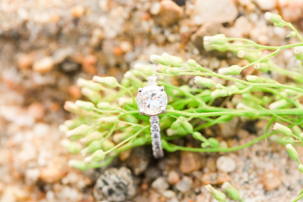 The classic ring shot during an engagement session at Harvey's Beach in Old Saybrook, CT.