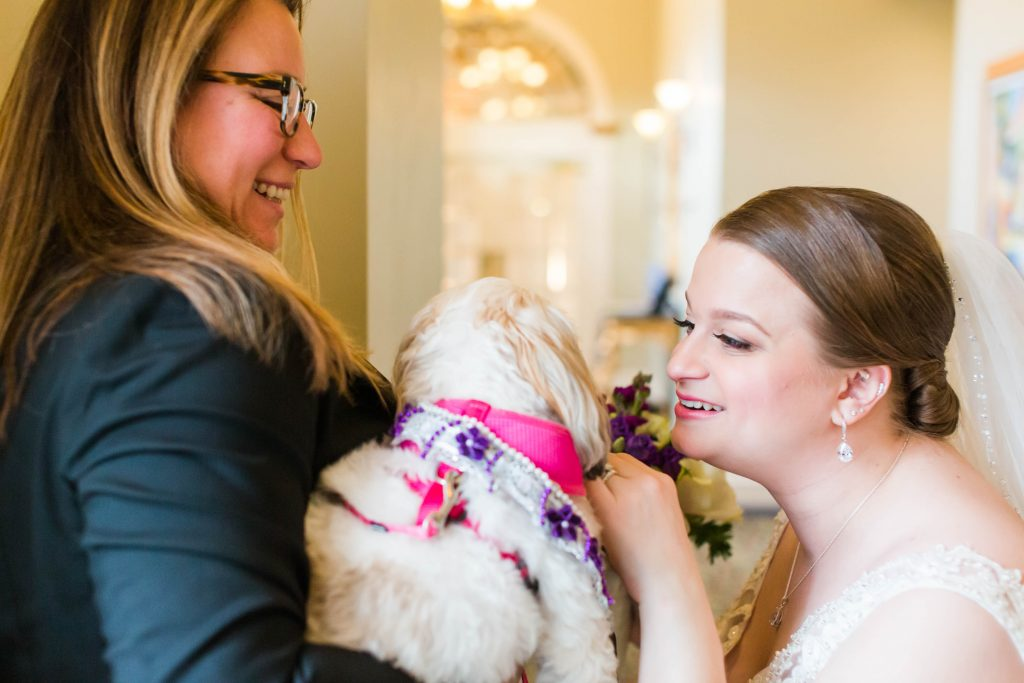 The bride included her dog in the wedding, who walked down the aisle first on her leash with her flowers collar at The Riverview in Simsbury, CT.